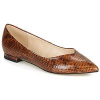Pantofi Femei Balerin și Balerini cu curea André LISERON Maro
