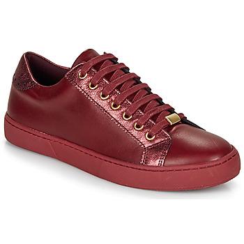 Pantofi Femei Pantofi sport Casual André BERKELEY Roșu-bordeaux