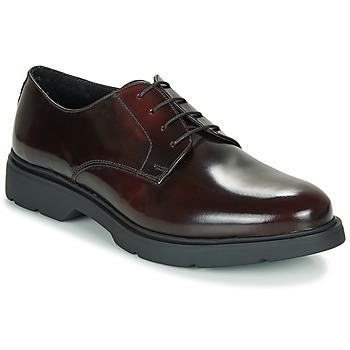 Pantofi Bărbați Pantofi Derby André CHAD Roșu-bordeaux