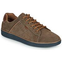 Pantofi Bărbați Pantofi sport Casual André ELTON Kaki
