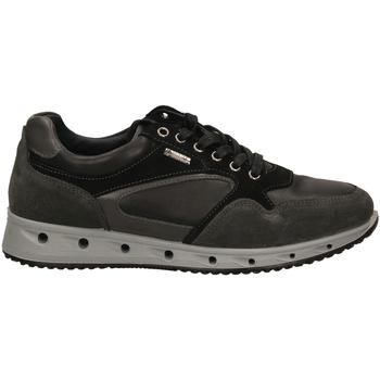 Pantofi Bărbați Pantofi sport Casual IgI&CO ULSGT 21389 grisc-grigio-scuro