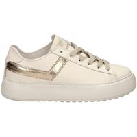 Pantofi Femei Pantofi sport Casual Pony TOP STAR OX LITE c1-bianco-oro
