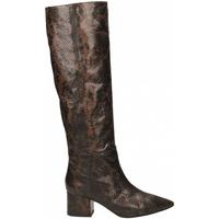 Pantofi Femei Cizme casual Giampaolo Viozzi TANZANIA marrone