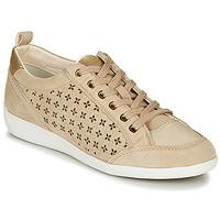 Pantofi Femei Pantofi sport Casual Geox D MYRIA Bej