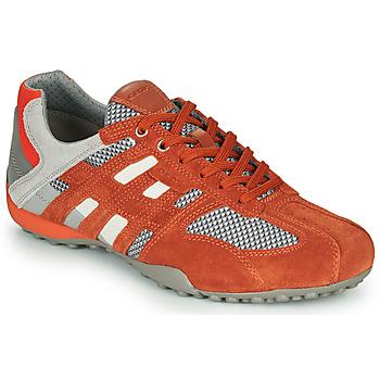 Pantofi Bărbați Pantofi sport Casual Geox UOMO SNAKE Roșu / Gri