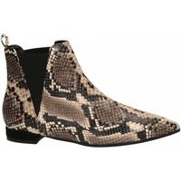 Pantofi Femei Botine Andrea Zali DIAMANT roccia