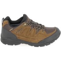 Pantofi Bărbați Drumetie și trekking Aigle Vedur Low MTD Marron Maro