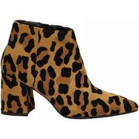 Pantofi Femei Pantofi cu toc Andrea Zali SAVANA zenzero