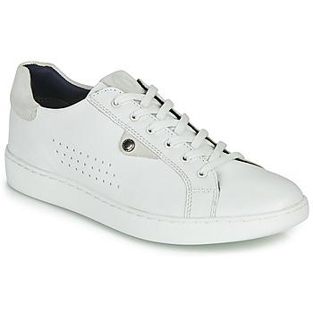 Pantofi Bărbați Pantofi sport Casual Base London BUZZ Alb