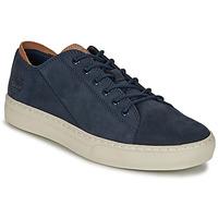 Pantofi Bărbați Pantofi sport Casual Timberland ADV 2.0 CUPSOLE MODERN OX Albastru
