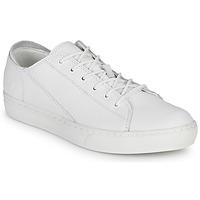 Pantofi Bărbați Pantofi sport Casual Timberland ADV 2.0 CUPSOLE MODERN OX Alb