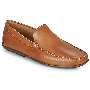 Pantofi Bărbați Pantofi barcă So Size MILLIE Camel