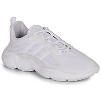 Pantofi Bărbați Pantofi sport Casual adidas Originals HAIWEE Alb