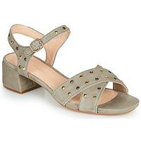 Pantofi Femei Sandale  Clarks SHEER35 STRAP Taupe / Ținte
