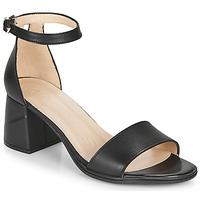 Pantofi Femei Sandale  Wonders  Negru