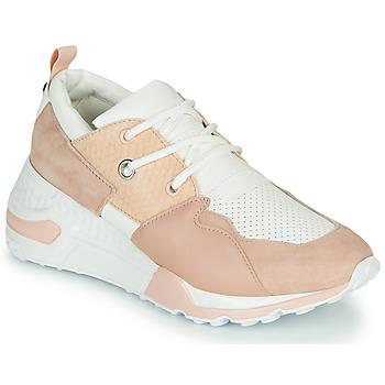 Pantofi Femei Pantofi sport Casual Steve Madden CLIFF Roz