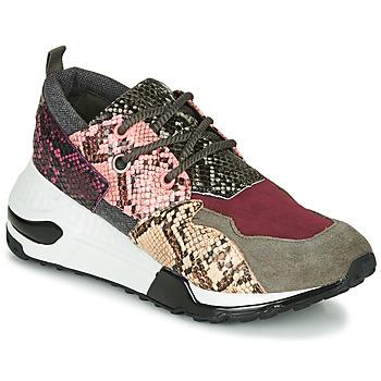 Pantofi Femei Pantofi sport Casual Steve Madden CLIFF Multicolor