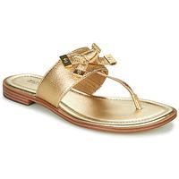 Pantofi Femei  Flip-Flops MICHAEL Michael Kors RIPLEY THONG Auriu