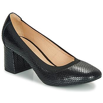 Pantofi Femei Pantofi cu toc André LAYA Negru / Imprimeu