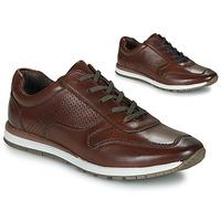 Pantofi Bărbați Pantofi sport Casual André SPORTCHIC Maro