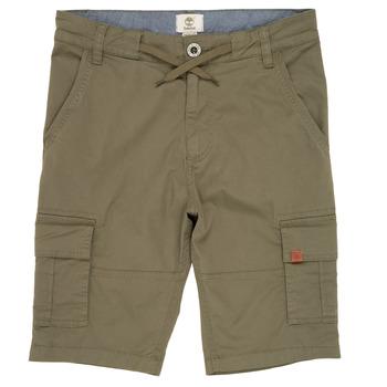 Îmbracaminte Băieți Pantaloni scurti și Bermuda Timberland TAO Verde