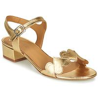 Pantofi Femei Sandale  Emma Go POPPY Auriu