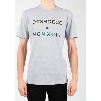 Îmbracaminte Bărbați Tricouri mânecă scurtă DC Shoes DC SEDYZT03760-KNFH grey