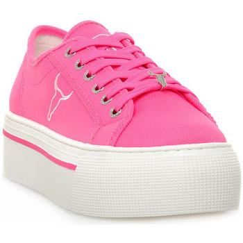 Pantofi Femei Pantofi sport Casual Windsor Smith RUBY CANVAS NEON PINK Rosa