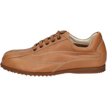 Pantofi Bărbați Pantofi sport Casual Hogan BN129 Maro