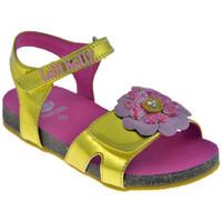 Pantofi Fete Sandale  Lelli Kelly  Auriu