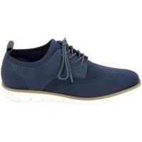 Pantofi Bărbați Pantofi Oxford  Schmoove Echo Derby Marine albastru