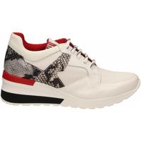 Pantofi Femei Pantofi sport Casual Tosca Blu PRIMULA co4-roccia