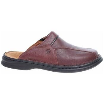 Pantofi Bărbați Pantofi Oxford  Josef Seibel Pantoletten Cafenii