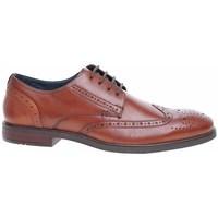 Pantofi Bărbați Pantofi Derby Josef Seibel 42205786370 Cafenii