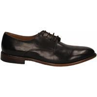 Pantofi Bărbați Pantofi Derby Calpierre ANICOL cioccolato
