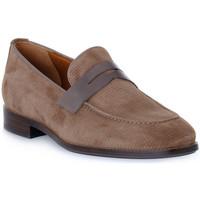 Pantofi Bărbați Mocasini Frau HIVE NAPPA TORTORA Beige