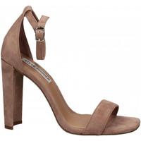 Pantofi Femei Sandale  Steve Madden FRANKY SUEDE mauve