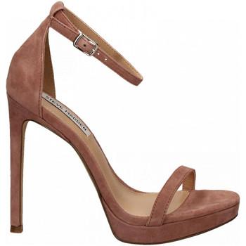 Pantofi Femei Sandale  Steve Madden MILANO SUEDE mauve