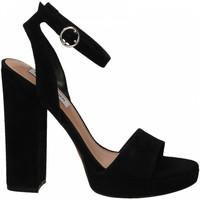 Pantofi Femei Sandale  Steve Madden GESTURE SUEDE black