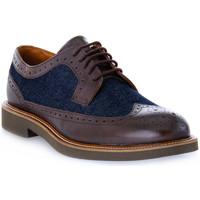 Pantofi Bărbați Pantofi Derby Frau SIENA TESTA MORO Marrone
