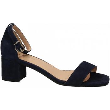 Pantofi Femei Sandale  Frau CAMOSCIO navy