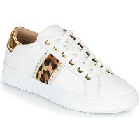 Pantofi Femei Pantofi sport Casual Geox PONTOISE Alb / Leopard