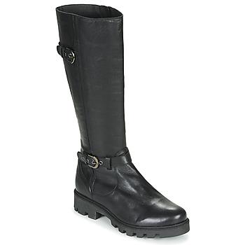 Pantofi Femei Cizme casual Pataugas CORA F4F Negru