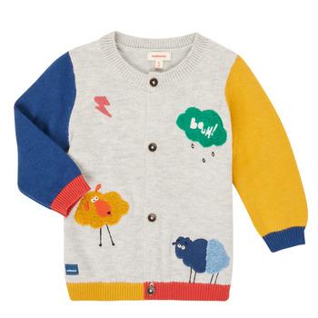 Îmbracaminte Băieți Jerseuri și Cardigane Catimini CR18020-20 Multicolor