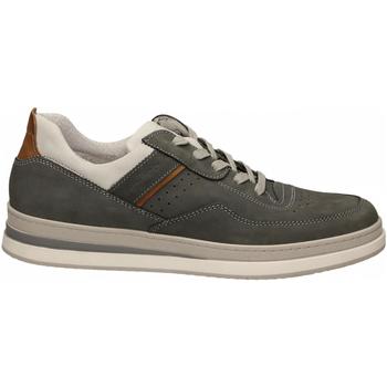 Pantofi Bărbați Pantofi sport Casual IgI&CO UIK 51432 grig-scuro