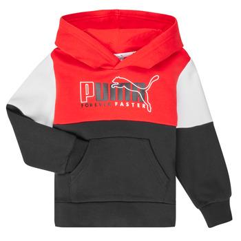 Îmbracaminte Băieți Hanorace  Puma ALPHA HOODY Multicolor
