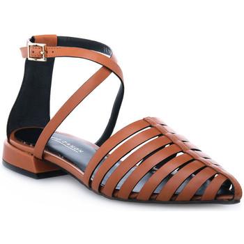 Pantofi Femei Sandale  Elvio Zanon PARMA CUOIO Marrone
