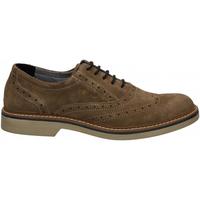 Pantofi Bărbați Pantofi Derby IgI&CO UFP 51050 fango