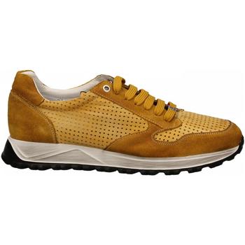 Pantofi Bărbați Pantofi sport Casual Exton ANT ocra