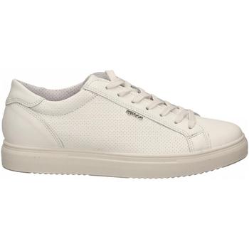 Pantofi Bărbați Pantofi sport Casual IgI&CO USH 51387 bianco